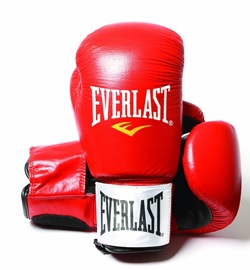 Everlast Fighter Boxing Gloves