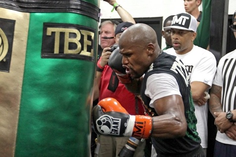 Mayweather Heavy Bag